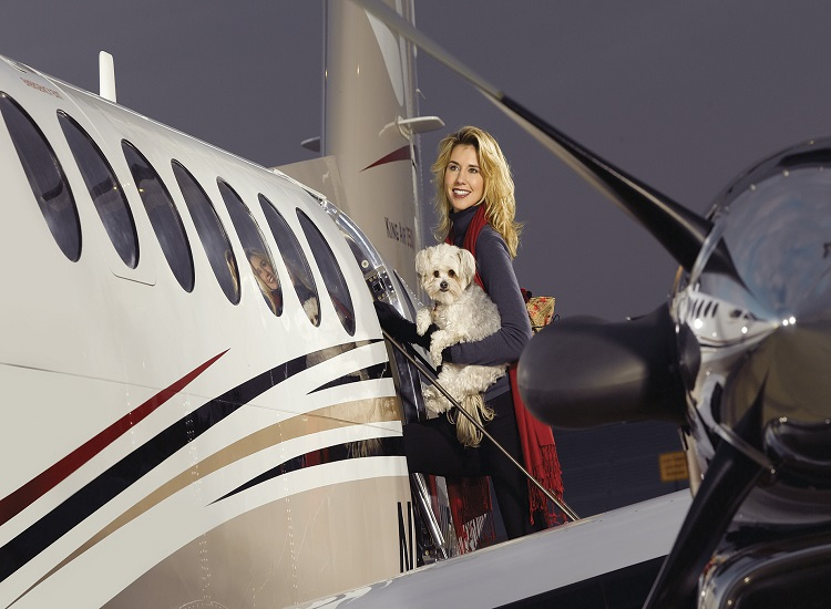 The Consider Flying Your Pet in Comfort